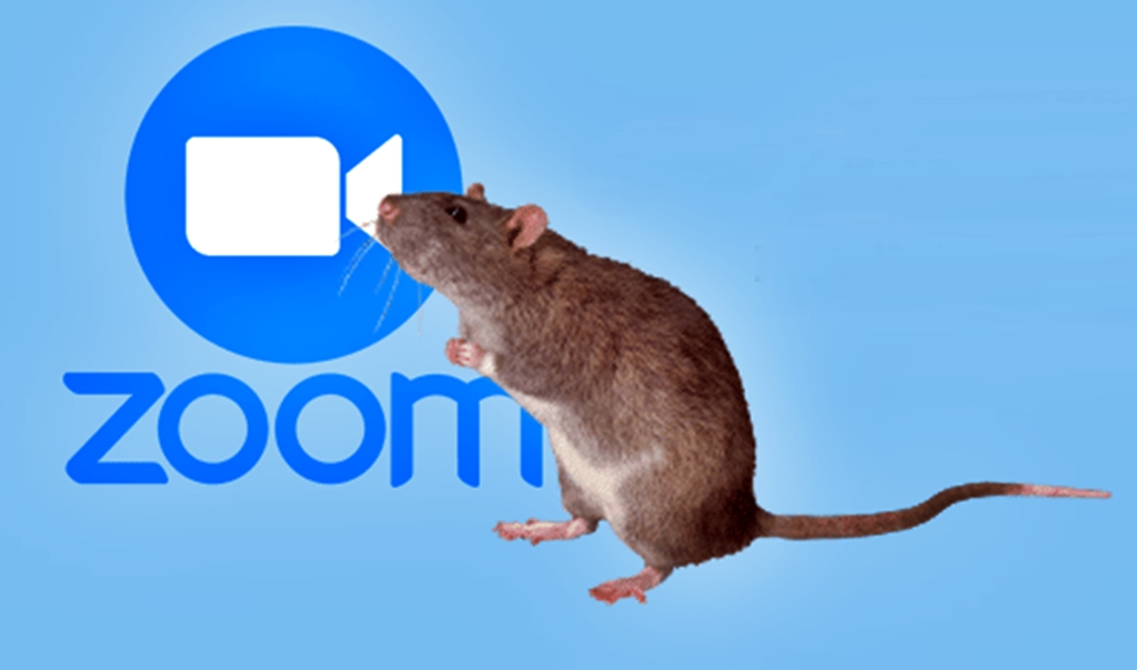 Fake Zoom Installers Infects PC with WebMonitor RAT